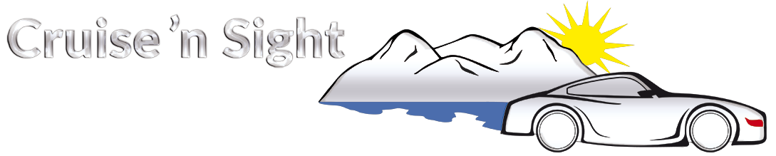 cruisensight logo